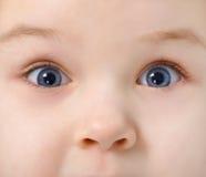 Ojos del niño por completo del interés fotografía de archivo libre de regalías