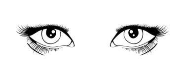 Ojos del vector Foto de archivo
