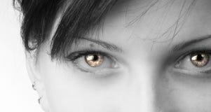 Ojos extraños Imagen de archivo libre de regalías