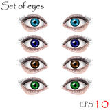 Ojos femeninos hermosos Imagen de archivo libre de regalías