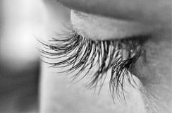 Ojos grandes con las pestañas largas hermosas imagen de archivo