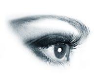 Ojos hermosos de la mujer Imagen de archivo