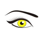 Ojos hermosos del amarillo Foto de archivo libre de regalías