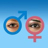 Ojos masculinos y femeninos en azul del graduado Imagen de archivo libre de regalías
