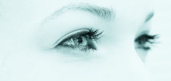 Ojos naturales fotos de archivo