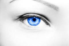 Ojos profundos de la mirada Fotografía de archivo libre de regalías