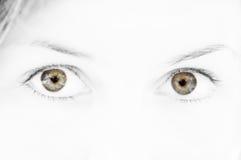 ojos verdes fotografía de archivo