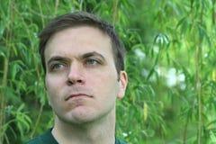 Ojos verdes Imágenes de archivo libres de regalías