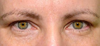 Ojos verdes de una mujer joven en un cierre encima de la visión fotografía de archivo libre de regalías
