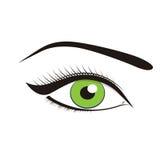 Ojos verdes hermosos Fotografía de archivo libre de regalías