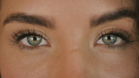 Ojos verdes hermosos almacen de video
