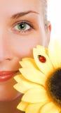 Ojos verdes y girasol Foto de archivo