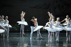 Поцелуй принца для того чтобы позволить Ojta получить освобождал сцены последнего волшебства- озера лебед Озер-балета лебедя Стоковое Изображение