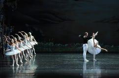 Ojta disse o história-bailado O Lago das Cisnes do príncipe fotos de stock royalty free