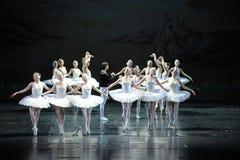Ojta forgive the prince-The last scene of Swan Lake-ballet Swan Lake Stock Photo