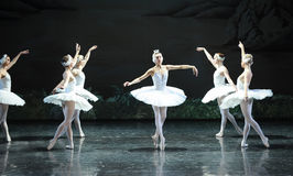 Ojta misunderstood the prince-The last scene of Swan Lake-ballet Swan Lake Royalty Free Stock Photo