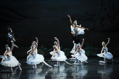 Ojta and Prince led the swans and Demons fight-The last scene of Swan Lake-ballet Swan Lake Royalty Free Stock Photography