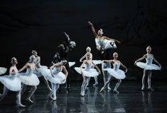 Ojta and Prince led the swans and Demons fight-The last scene of Swan Lake-ballet Swan Lake Royalty Free Stock Images
