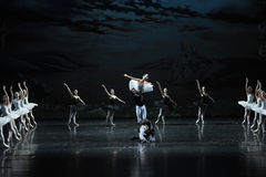 Ojta and Prince led the swans and Demons fight-The last scene of Swan Lake-ballet Swan Lake Royalty Free Stock Photos