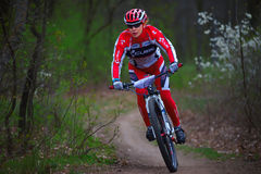 Okänd mountainbikecyklistkvinna Royaltyfri Fotografi