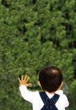 okänd värld Fotografering för Bildbyråer