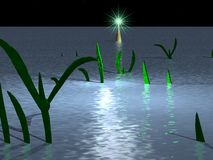okänd vegetation Arkivfoton