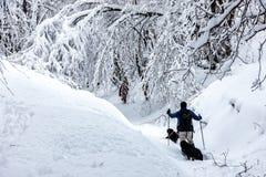 Okänt manparti med hans hund som in går i ett snöig landskap Royaltyfria Foton