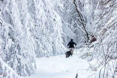 Okänt manparti med hans hund som in går i ett snöig landskap Arkivfoto