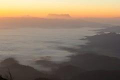 okładkowy mgły ranek góry drzewo Fotografia Stock