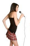 卡拉OK演唱话筒 库存图片
