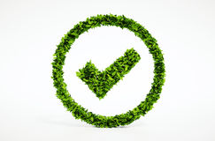 Ok eco symbol Royalty Free Stock Image
