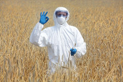 Ok gesture on field of crops Royalty Free Stock Photography