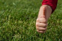 Ok tecken på grönt gräs Royaltyfria Bilder