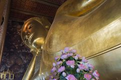 Ok The Wat Pho temple is especially known for hosting the Great Royalty Free Stock Photography