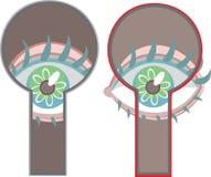 Oka zerkanie przez keyhole Fotografia Stock
