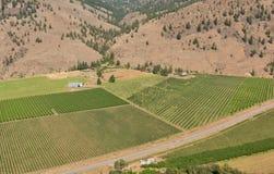 Okanagan Peach Farms Stock Photos