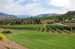 Okanagan Valley in British Columbia, Canada Stock Images