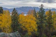 Okanagan Valley in the Fall Stock Image