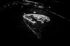 Okapturza ornamentacyjnego samochód Jaguar Jaguar w skoku Obrazy Stock