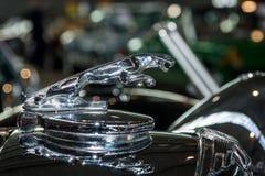 Okapturza ornamentacyjnego samochód Jaguar SS 100 Jaguar w skoku Zdjęcia Stock