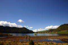 湖okareka 免版税图库摄影