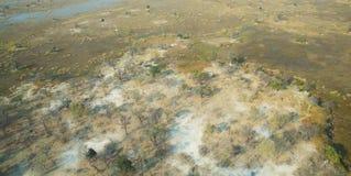 Okavango三角洲 库存图片