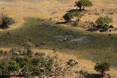 okavango de delta Photographie stock