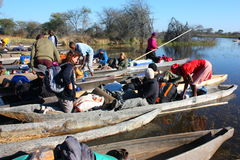 Okavango Delta 免版税库存图片