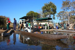 Okavango Delta 免版税图库摄影