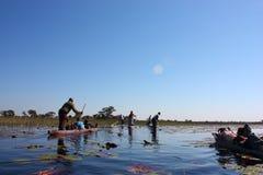 Okavango Delta 库存照片