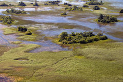 Okavango Delta aerial. Early spring right after floods Stock Photography