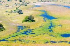 Okavango Delta aerial view Royalty Free Stock Photo