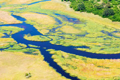 Okavango Delta aerial view Stock Images
