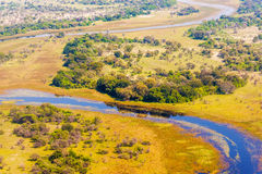 Okavango Delta aerial view. Aerial view at picturesque view of Okavango Delta, Botswana Royalty Free Stock Images